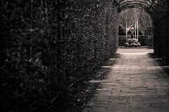 Woman and Grief (x1klima) Tags: light blackandwhite bw friedhof woman art girl cemetery grave architecture germany nude death sadness licht leiden pain hurt mourning kunst culture agony hannover gram misery grab distress sorrow harm tod qual blick einsamkeit abandonment emptiness affliction jammer grief leben ache misfortune burialplace schmerz trauer misere kummer sterben aching sorge leid braless soreness traurigkeit elend grabsttte verzweiflung schwarzweis mhe qualen not engesohde trauern betrbnis bedrngnis trauerzeit sonya7r sonarfe55mmf18za