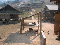 Akha Village luang Namtha Province