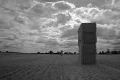 Hay Stack (Nathan Wyatt) Tags: xpro1 hay field harvest blackandwhite landscape wide sky