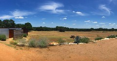 Big sky and big sun at the Treaty Oak distillery today. Scenes like this remind me why I love Texas (and just how hot it is). @treatyoaktx #localtourist #distillery #whiskey #gin #vodka #rum #texasdistillery #texas #drippingsprings #hillcountry #landscape (ClevrCat) Tags: sky sun hot love me landscape this is big oak texas view like whiskey it just and vodka rum how why hillcountry gin today distillery scenes remind treaty drippingsprings localtourist i instagram ifttt treatyoaktx texasdistillery