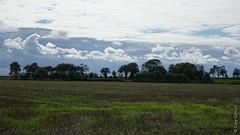 Paysage normand prs de Manvieux (Basse-Normandie) (2015-09-04 -10) (Cary Greisch) Tags: france calvados fra bassenormandie carygreisch manvieux