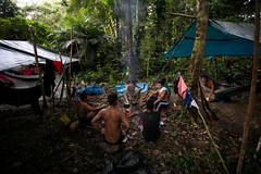 Guilherme.Gnipper-0179 (guilherme gnipper) Tags: picodaneblina yaripo yanomami expedio expedition cume montanha mountain wild rainforest amazonas amazonia amazon brazil indigenous indigena people