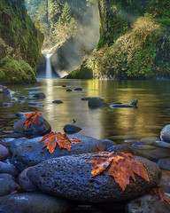 'Steamy Mornings' - Punchbowl Falls, Oregon (Gavin Hardcastle - Fototripper) Tags: columbiarivergorge punchbowl falls oregon waterfall autumn fall river creek moss rays light green gavinhardcastle fototripper