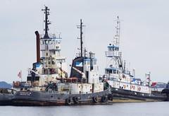 Hamilton Tugs (jmaxtours) Tags: port hamilton tugs tugboats hamiltonontario halifaxnovascotia mckeilmarine portofhamilton hamiltontugs thetonymackay theflorencem