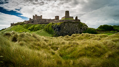 Bamburgh castle from the dunes (tattie62) Tags: england building castle history landscape dunes historic bamburgh fortress nothumberland historicbuilding bamburghcastle