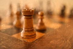 The Sentinel (josephburden58) Tags: chess chessmen rook castle games stilllife boxwood staunton canoneosm