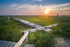 Being There (DJawZ) Tags: landscape fuji fujifilm sunset sunsetwx sun green sunlight dock summer outdoor clouds grass marsh nj bay