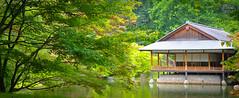 Hasselt - 04 aout 2016 -12 (Thierry Valdin) Tags: jardinjaponais japon hasselt parc belgique tuin japanesetuin belge valndereen flandre