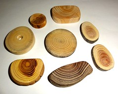 Jewelry supplies making, jewellery supply. Jewelry findings supplies. Wood jewelry findings supplier. Wooden discs slices, natural supplies. (john bonham2) Tags: jewelrysupplies jewelryfindings rusticweddings natural wood slices discs jewelry supply findings making parts nature texture wooden slabs beautiful tree