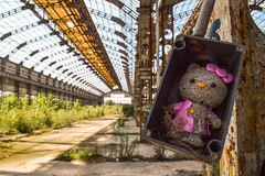 Urbex : Ciao Kitty (Oreo Urbexgrafix) Tags: industrial indus industriel overgrown hello kitty stencil perspective serre glass verrire photography photo picture pics image photographie nikon instagram flickr facebook 500px urbex exploration explo beautiful wonderful amazing surrender magnificent resignation splendid lovely marvelous gorgeous great color colorfull ghost decay abandoned deserted derelict forsaken disused abbandonato verlassen verlaten forlatt abandonado  vergiven oputn forgotten lost place lostplace light urban urbaine decaying beauty