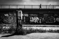 Electric City (tomabenz) Tags: berlin noiretblanc urban monochrome bw blackandwhite a7rm2 street sonya7rm2 streetphotography