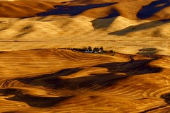 After The Summer Harvest (otterdrivernw) Tags: steptoebutte steptoe palouse