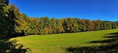 Mountainbike Tour zum Roberg im Herbst (Blende2,8) Tags: reutlingen alb schwbischalb bume himmel wiese waldrand herbstwald wald