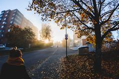 A7K_7862.jpg (heikkipekka) Tags: autumn nikon d700 morning finland sunrise nikond700 tokina 1017 2016 fall suomi jyvskyl keskisuomi fi