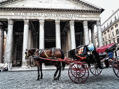 Aspettando clienti - Waiting for customers (Davide Cherubini) Tags: roma rome cavallo horse carrozza carrozzella botticella caballo pantheon bellitalia italia italy