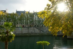 Autumn sunshine (jglsongs) Tags: paris france europe sunshine riverseine