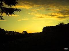 Golden Sunlight [EXPLORED] (caren (Thanks for 1 Million+ views)) Tags: sunset sunlight sunsetinwales goldensky wales sonnenunterganginwales welshsunset machludhaul magicmoments
