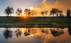 Sun shines, bushfire burns and pelican flies (Ancon0031) Tags: cartersridge bushfire kenilworth sunrise sunstar reflection maryriver cold