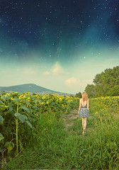 Falling Night (MonieHoleva) Tags: landscape mountains field sunflower grass grassland plant outdoor nature girl blonde nikon dress slovakia walk falling night fineart fine art surreal fantasy imagination stars universe dream find summer flowers trees forrest view city