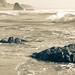 Irish Beach Surf
