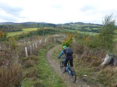 Smurf @ Trailground Brilon (Wuppataler) Tags: mtb mountainbike trailground brilon sauerland herbst autumn orange five cyan smurf