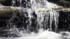 20161023_140551 (Eu Aventureiro | Vibe +) Tags: euaventureiro turismo ecoturismo esportesdeaventura esportesradicais trilhandocomrick excursao ibitipoca minasgerais parqueestadualdoibitipoca circuitodasaguas janeladoceu trilha aventura cachoeiras grutas cruzeiro vibepositiva vemparaonossomundo