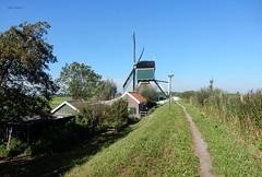 Spengense molen aan de Wagendijk, Spengen (bcbvisser13) Tags: molen huisje dijk polder riet wipmolen spengen gehucht spengensemolen provutrecht nederland eu wagendijk