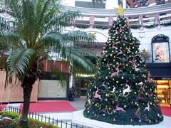 Casa del Ángel (benontherun.com) Tags: christmas tree argentina argentine natal arbol navidad buenosaires noel sapin