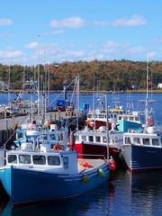 Port Mouton, Nova Scotia Herring Fleet in Autumn (HerringCoveMike) Tags: autumn canada fall leaves port fishing novascotia islander commercial cape fishingboat mouton herring inshorefishing