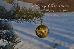 Merry Christmas and Happy New Year, my dear friends! (Explored 20.12.14  #90) (L.Lahtinen) Tags: christmas winter decorations snow nature ball december branch explore bauble talvi lunta luonto joulu joulukuusi oksa joulukuu kuusi explored joulukoristeet inexplore joulupallo kuusenkoriste joulutunnelma