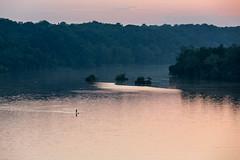 Potomac river, Washington DC (yaarus) Tags: usa nature river washingtondc washington districtofcolumbia unitedstates unitedstatesofamerica natuur potomac vs 70200mm rivier   canon70200mm verenigdestaten     70200mmf28lisii
