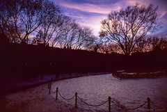 Winter Skies Cobble Hill Park, Brooklyn (Raphe Evanoff) Tags: nyc trees winter sunset sky urban color film brooklyn landscape colorful vibrant cobblehill magichour