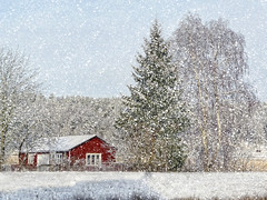 Snowy winter in the country. (Bessula) Tags: winter red house snow tree forest season landscape scenery sweden country bessula coth5