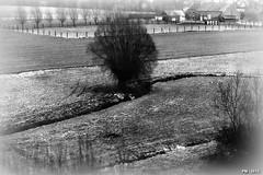 pinhole - stnop (P. Marion) Tags: bw landscape nikon belgium belgique pinhole pm stnop marione d810