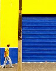 Que seria do amarelo ... (shumpei_sano_exp4) Tags: vivid golddragon colorphotoaward diamondclassphotographer theunforgettablepictures