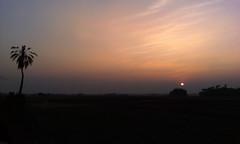 Sunset in Parshuram, Feni, Bangladesh [Explored] (samim_hasan) Tags: road sunset shadow sky sun storm black flower tree green bird nature beautiful beauty field night landscape evening natural sunny before bangladesh feni htc parshuram