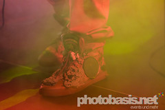lee-scratch-perry-dub-cahmpions-festival-2015-WUK-30.jpg