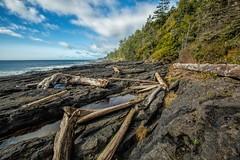Parkinson Beach Head (photobydave@gmail.com) Tags: beach marine head columbia vancouverisland trail driftwood british geology juandefuca parkinson juandefucamarinetrail