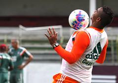 Treino do Fluminense 27/01/2015 (Fluminense F.C.) Tags: walter nelson treino pereztreinofluminensecarioca 2015prtemporada 2015jogo