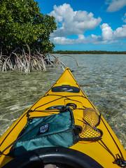 camping usa us fishing florida boating rv floridakeys bigpinekey bigpinekeyfishinglodge bpkfl 2015bpkflphoto