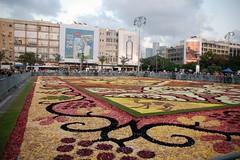 cvjetni tepih