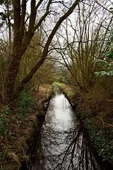 Oereler Kanal (Cathrine1) Tags: tree nature water germany deutschland town wasser natur stadt bume niedersachsen lowersaxony bremervrde
