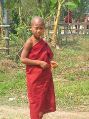 Young Monk in Nyaung Shwe