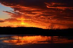 Sunset From The Archives (Jayhawk Explorer) Tags: light sunset sky ice water clouds reflections lawrence ks wetlands kansas douglascounty bakerwetlands nikond5100 ipiccy