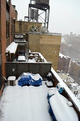 February Snow (Sarah_Ackerman) Tags: newyorkcity winter snow newyork manhattan upperwestside uws