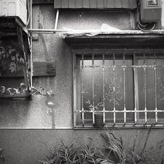 (anchor recess) Tags: film 大阪 osaka フィルム mamiya6mf