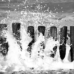 spray party (loop_oh) Tags: sea orange holland beach water netherlands dutch strand sand energy meer wasser wind energie zee spray pole northsea foam scum poles nordsee nederlands oranje schaum niederlande pfosten nieuwvliet nordzee gischt nieuwvlietbad