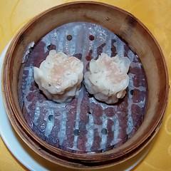 #9389 steamed pork dumplings () (Nemo's great uncle) Tags: food dinner chinatown chinese yokohama  allyoucaneat    shichifuku  nakaku    kanagawaprefecture   yamashitacho  yamashitamachi