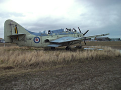 Fairey Gannet XG882 derelict at Errol Airfield, 2015 (Troonafish) Tags: abandoned rotting field rural plane scotland decay aircraft aviation military perthshire scottish planes preserved lm derelict tayside deserted gannet militaryaviation errol rn eroded lossiemouth disrepair royalnavy planespotting aircraftmuseum raflossiemouth aircraftspotting historicaviation scottishaviation preservedaircraft faireygannet wrecksandrelics 849squadron rnaslossiemouth gannett5 errolairfield xg882 849sqn preservedaeroplane faireygannett5 gavtroon gavintroon aviationscotland