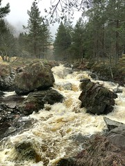 Middle Earth? (stuant63) Tags: angus scotland middleearth tolkien river spate burn thewhitewater glen forestry boulders